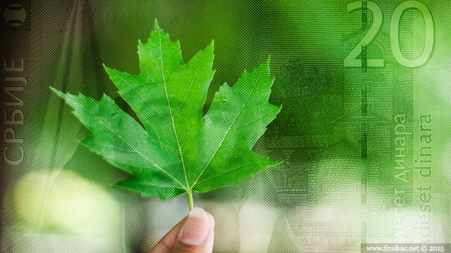 News - Gde se troši novac od ekologije