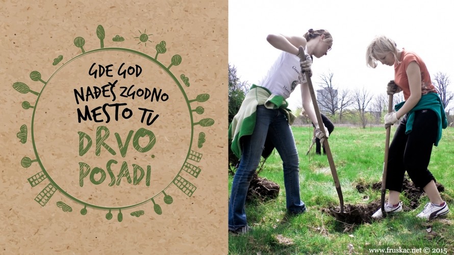 Ecology - Sadimo šumicu za pčele!