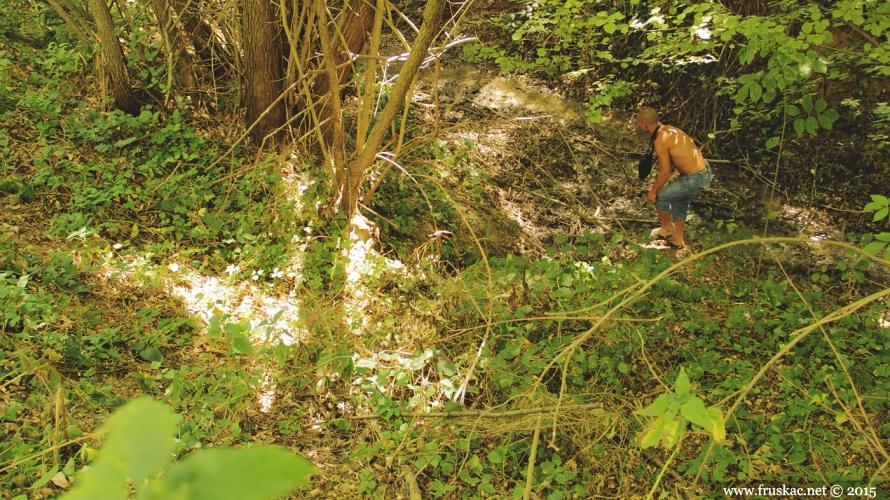 Springs - Izvor Čalambir