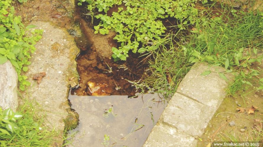 Springs - Kamenolom Spring