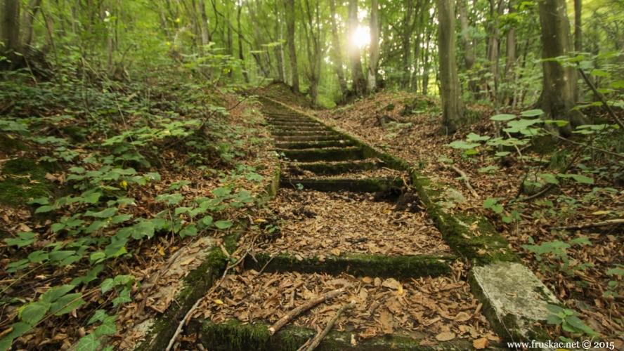 Misc - Vrdnik stairs