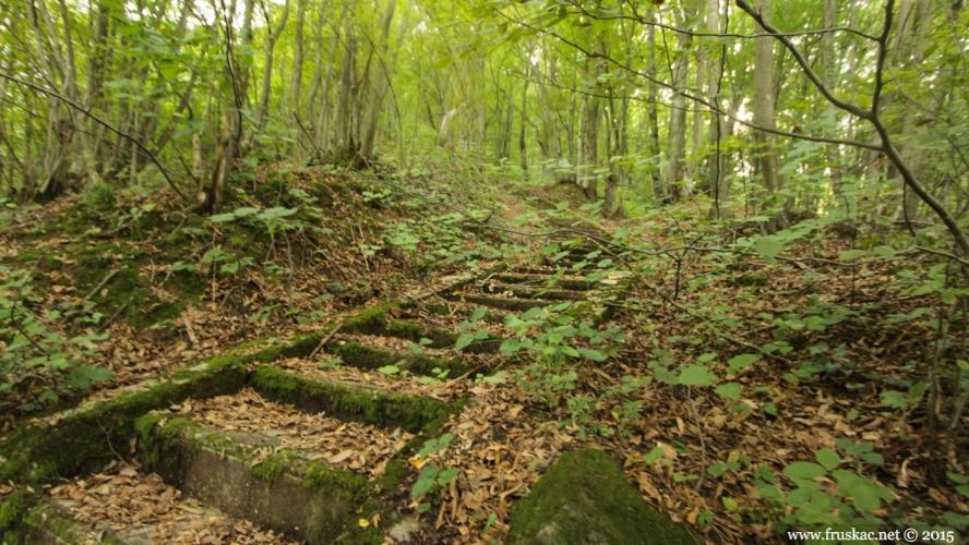 Misc - Vrdničke stepenice