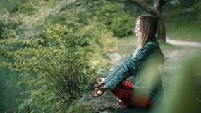 """Doživi Shinri-ioku i """"okupaj"""" se u imunološkom sistemu šume"""